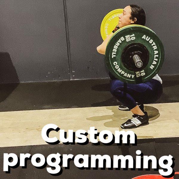 Custom Online Programming